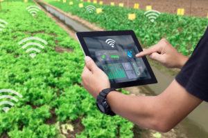 Sensor Pervasiveness in IoT